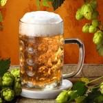 приготовление домашнего пива