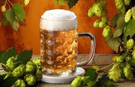 Как сделать пиво из хмеля в домашних условиях рецепты 8