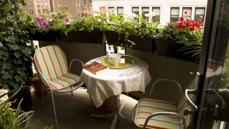 Цветы и растения на открытом балконе