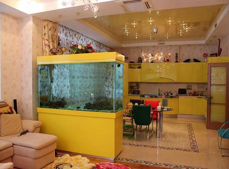 аквариум для зонирования
