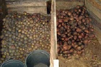погреб для хранения картофеля
